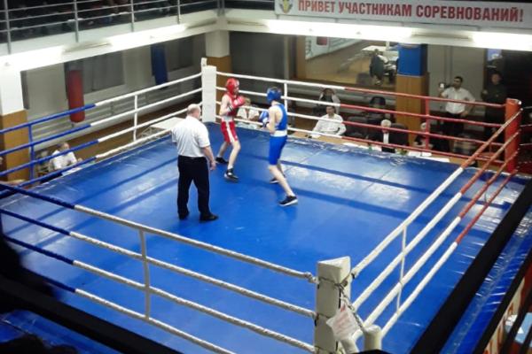 5 боксеров из Кисловодска стали призерами на краевых соревнованиях